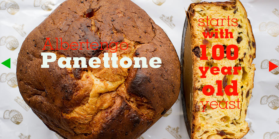 The best Italian Baked Holiday Panettone Christmas Bread