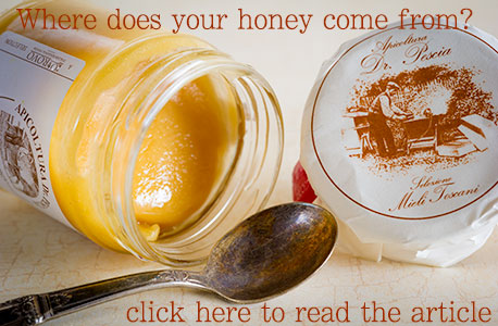 The History of Honey Article