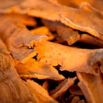 Ceylon Cinnamon Bark - Organic - Hawaii
