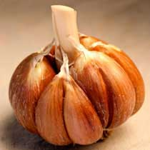 Bailey Roc Organic Garlic - 1/2 pound