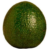 Fresh Reed Avocados - West  Coast