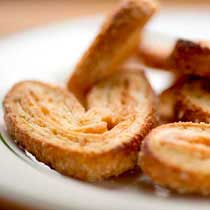 Palmier Mini Elephant Ears