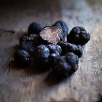 Fresh Black Perigord Winter Truffles - 1/4 pound