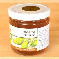 Florida White Tupelo Honey