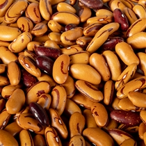 Organic Tiger Eye Beans - Garden Treasures Farm