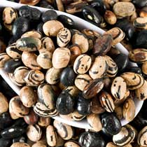 Willowood Farm Peregion Beans - Dried