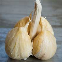 Japanese Organic Garlic