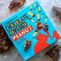 Zingerman's Chocolate Covered Peanut Brittle