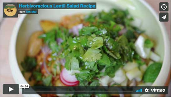 Herbivaracious Lentil Salad Video Recipe