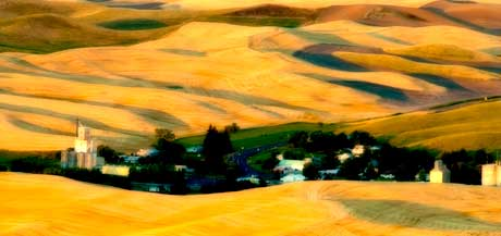 Palouse farmlands