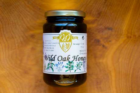 Wild Oak Honey Catalonia