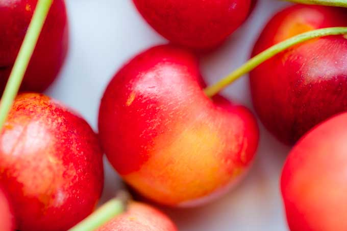 Shop now for sweet washington cherries