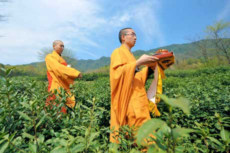 Buddhist Monks Bless Zen Tea