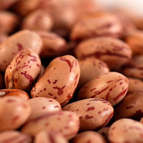 Cranberry Beans - Dried