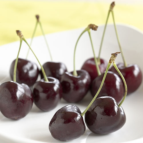 Fresh Lapin Cherries - 5 pound box